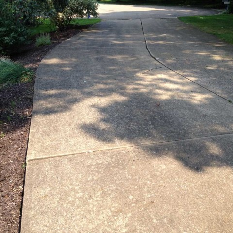 Driveway Cleaning 2 Before