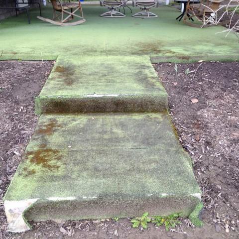 Exterior Carpet Before