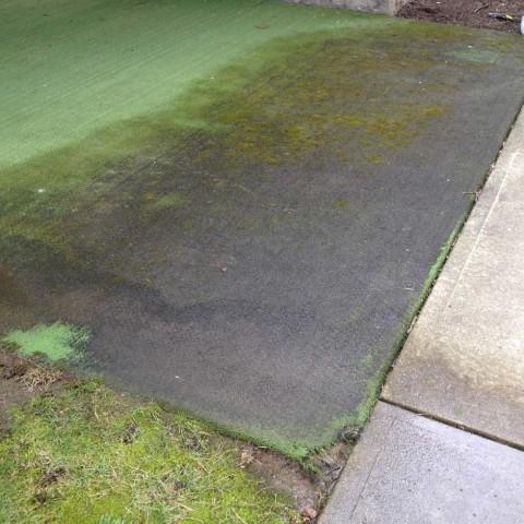 Exterior Carpet 2 Before