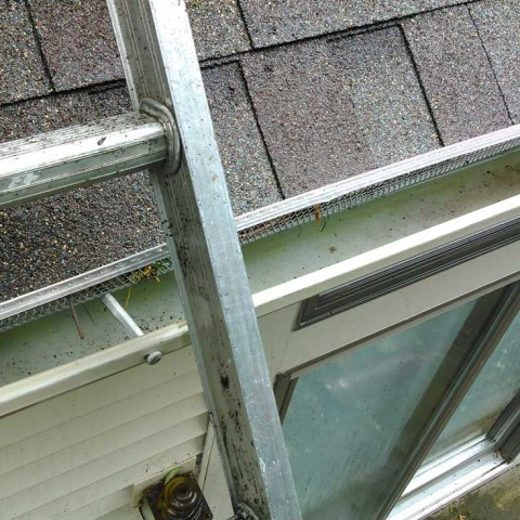 Mold In Gutter After
