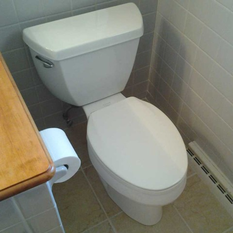Toilet Replace After